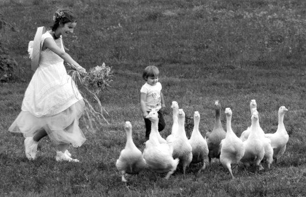 Foto di matrimonio stile reportage , ricevimento country