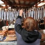 il piccolo mercato nel villaggio di Listvianka sulle rive del lago baikal , asia, siberia, russia, |the small market in the village of Listvyanka on the shore of lake baikal