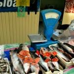 Asia , Russia, un banco del pesce in un mercato coperto di Valdivostok, città nell'estremo est della Russia sull'Oceano Pacifico |Asia, Russia, a fish counter in a covered market in Vladivostok, a city in the far east of Russia on the Pacific Ocean
