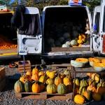 zucche e arance esposte per la vendita al mercato di tblisi squash and oranges on display for sale at market in Tbilisi ph © Nicola De Marinis