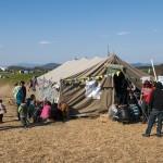 profughi al centro di informazioni nel campo di Idomeni sul confine tra grecia e macedonia