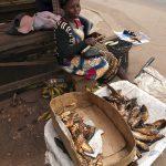 una donna vende del pesce arrostito a Yaoundè in camerun