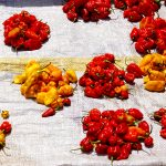 peperoni in vendita in un mercato di yaoundè in camerun
