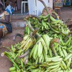 banana plantain in vendita al mercato di yaoundè in camerun