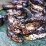 sardine essiccate in vendita al mercato di yaoundè in camerun