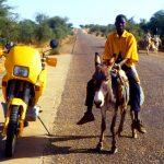 Niger, l'asino un mezzo di trasporto molto usato da queste parti