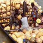 Niger, scarico delle zucche sul fiume Niger a Niamey