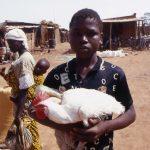 Burkina Faso, ragazzino che vende un gallo nel giorno del mercato a Nanorò