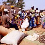 Burkina Faso, il giorno del mercato a Nanorò