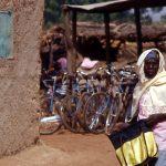Burkina Faso, donna con sullo sfondo delle biciclette in vendita al mercato di Nanorò