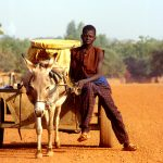 Burkina Faso, ragazzino con carretto che si reca al pozzo a prendere l'acqua al villaggio di Nanorò