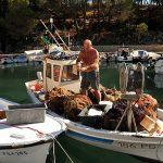 Europa, croazia, un pescatore pulisce i pesci sulla sua barca nel porto del villaggio di Mandre sull'isola di Pag