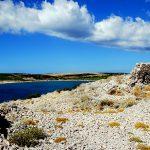Croazia Isola Di Pag,un tratto di costa verso Metajna con la tipica vegetazione mediterranea