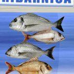 Europa, croazia, un cartello che indica una pescheria a Mnadre sull'isola di Pag