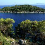 Dalmazia, Isola di Korkula, la costa nei pressi del villagio di Prizba