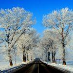 Romania, paesaggio invernale nei pressi di Suceava | Romania, winter landscape around Suceava