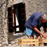 croatia, island of nin, an inhabitant of the island prepares for figs for drying in the sun