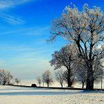 Romania, un'auto si avventura nella steppa nevosa che porta verso i Monastri dell Bucovina