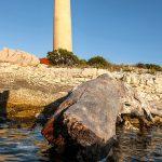 the lighthouse on the island of Dugi Otok veils rat