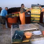 Europe, Croatia, fishermen aboard the vessel arrange the boxes on the fishing