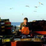 europa; croazia; pescatore; uomo; uomo al lavoro; lavoro faticoso; uomo con sigaretta; pesce; pescato; pesce; mare; peschereccio; rete da pesca; galleggiant