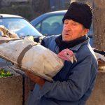 Romania, un uomo vende dei tacchini in una via di Bucarest