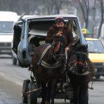 Romania un uomo trasporta con il carretto a cavallo una carcassa di automobile nel centro di Iasi
