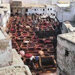 Marocco ,le tintorie di Fes