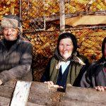 Romania, contadini a Scheia